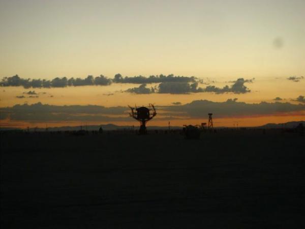 Железное дерево в песках Невады.