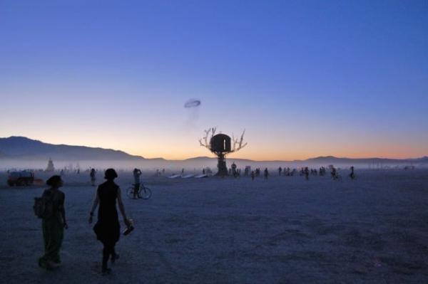 Железное дерево в песках Невады. (Фото 14)