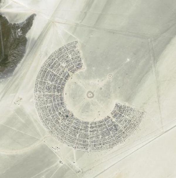 Железное дерево в песках Невады. (Фото 3)