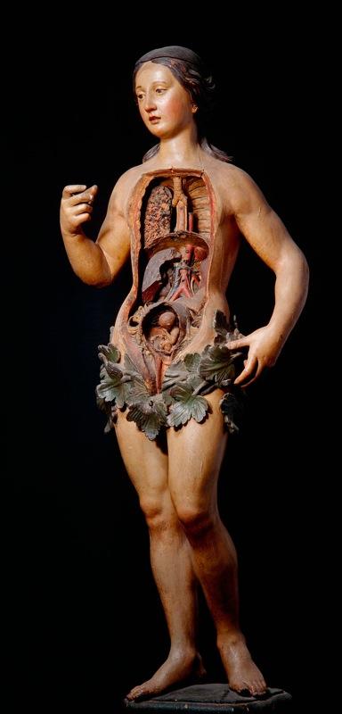 Медицинские приспособления в Викторианскую эпоху (Фото 17)