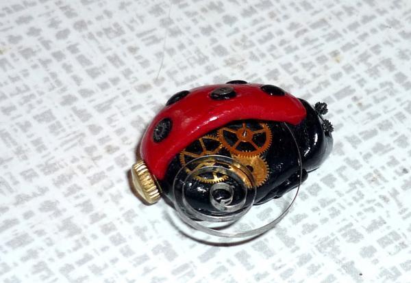 насекомое (Фото 3)