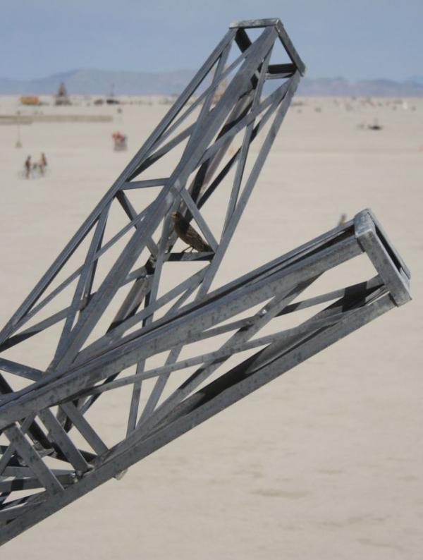 Железное дерево в песках Невады. (Фото 45)