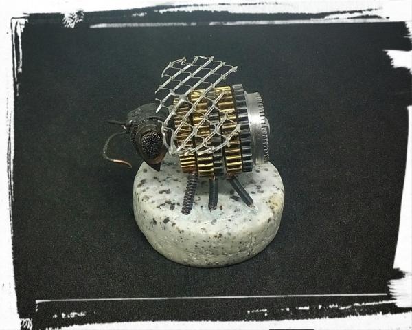 Карантинная солянка
