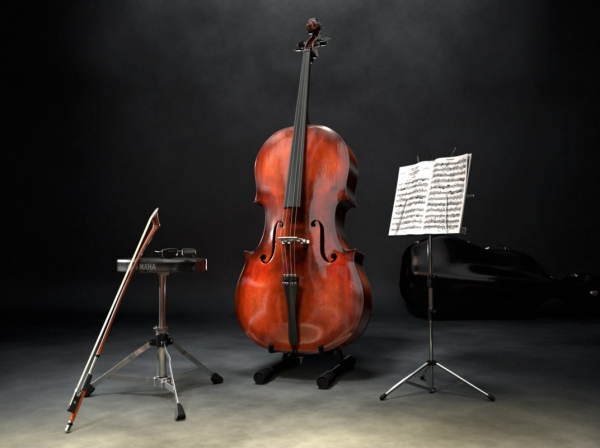 Это виолончель